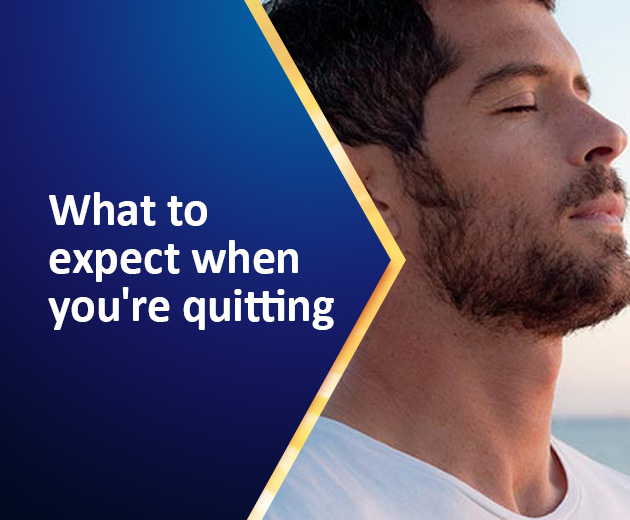 Article Expect Quitting